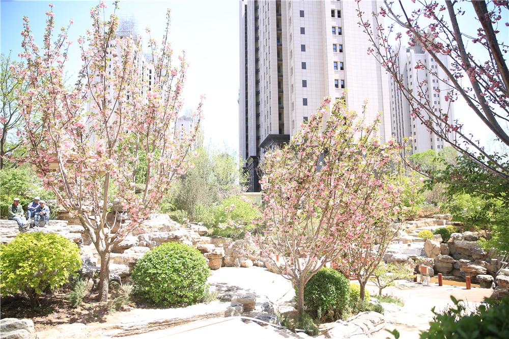 【紫御豪庭】园林盛景 恭迎品鉴 - 打造葫芦岛顶级园林